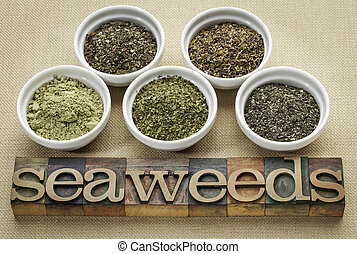 seaweeds - diet supplements - bowls of seaweed diet...