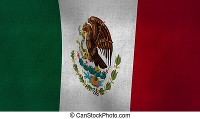 Mexico Flag Textured Loop-able - Flag Background Textured...