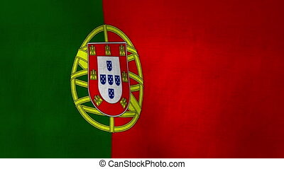 Portugal Flag Textured Loop-able - Flag Background Textured...