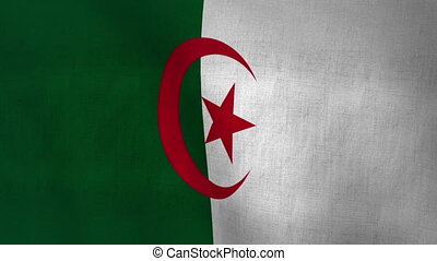 Algeria Flag Textured (Loop-able) - Flag Background Textured...