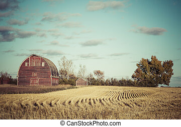 Old Red Barn - An old red barn on a farm