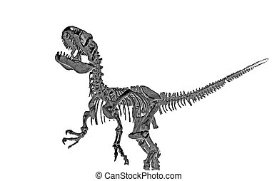 Tyrannosaur 1 - The assembled fossilized remains of a...