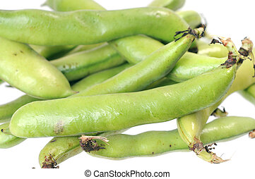 fava beans isolated on white