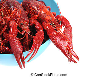 boiled crawfish in blue bowl isolated on white