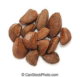 brazil nut - a group of brazil nut on white background