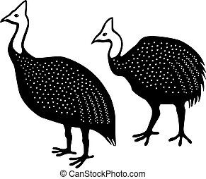 Guinea Fowl - Vector illustration of two helmeted guinea...