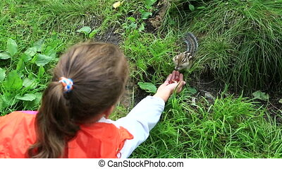 Little girl feeding from the hands of a chipmunk.