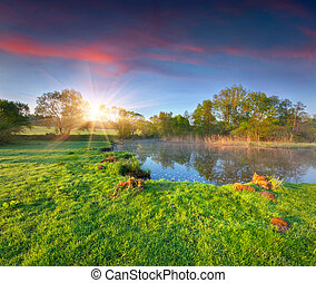 Lake in a spring forest. Colorful morning.