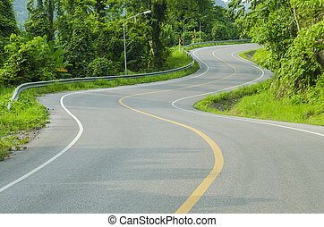 An empty S-Curved road on skyline drive.