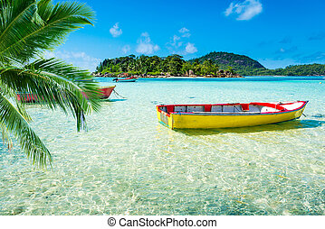 tropical beach with a boat