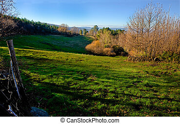 Mountain treeless field for livestock, Sierra de Gata, Spain