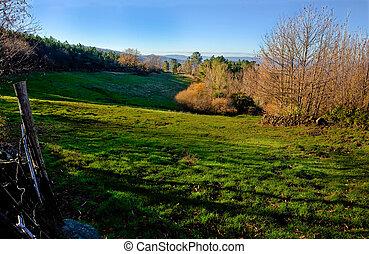 Mountain treeless field for livestock, Sierra de Gata, Spain