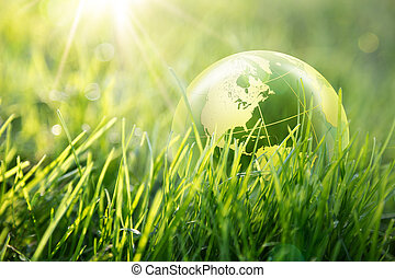 mundo, Enviromental, concepto, -, estados unidos de...
