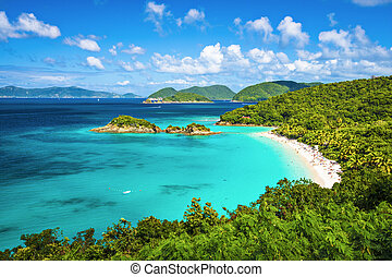 Trunk Bay St John - Trunk Bay, St John, United States Virgin...