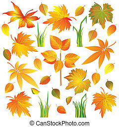 Set of autumn leaves and grass isolated over white