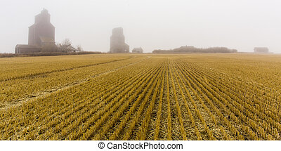 Grain Elevators in the Fog - A foggy and misty morning where...