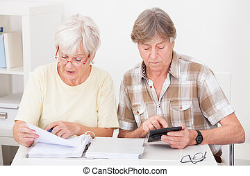 Senior Couple Doing Their Finances - Elderly Woman Checking...