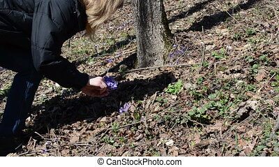 female pick violet bloom - girl in the woods reaps first...