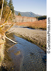 Winter Along Mountain Stream Hoh River Banks Olympic...