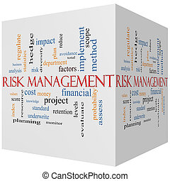 Risk Management 3D cube Word Cloud Concept with great terms...