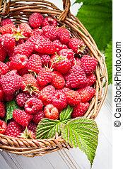 Freshly picked raspberries in the basket