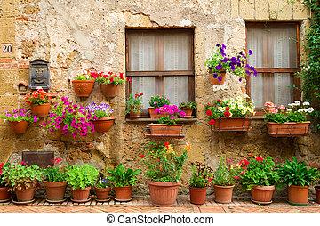 piękny, ulica, ozdobny, Kwiecie, Włochy