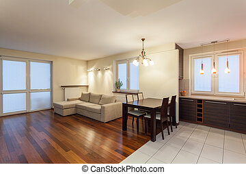 Spacious apartment - living room with bright couch