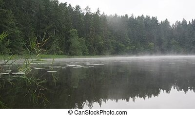 foggy lake - foggy forest lake by cold summer morning with...