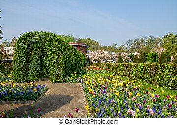 Keukenhof garden at sunny day , Netherlands - Colorful...