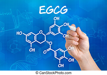 Hand with pen drawing the chemical formula of EGCG