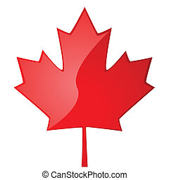 Maple leaf - Glossy illustration of a red maple leaf, symbol...