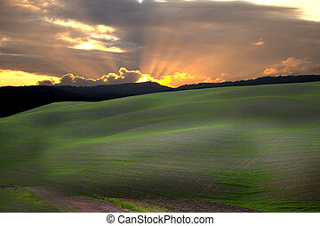 Tuscan county 3 - A view of cultivated fields of the tuscan...