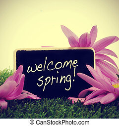 welcome spring - some flowers on the grass and a blackboard...