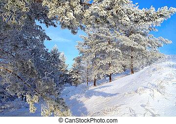 photographies de beau vieux hiver bois cadre paysage old armature csp26247203. Black Bedroom Furniture Sets. Home Design Ideas