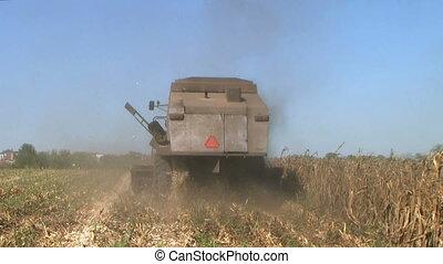 Combine Harvesting Corn 04 - Combine harvesting corn crop....