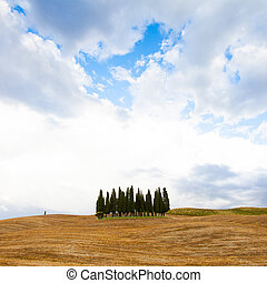 Tuscany before the storm - San Quirico, d'Orcia, Tuscany. A...