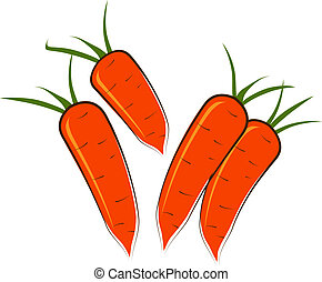 Some carrots on a white background. Vector.