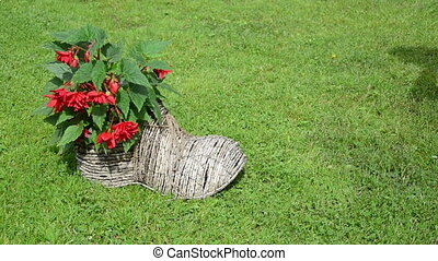 girl shoe form flower pot - Girl gardener in dress take...