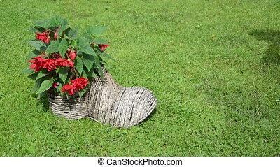 girl shoe form flower pot - Girl gardener in dress take...