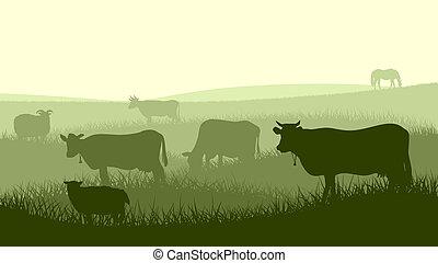 Illustration of farm pets. - Horizontal vector illustration...