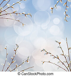 willow twigs with catkins frame on blue background