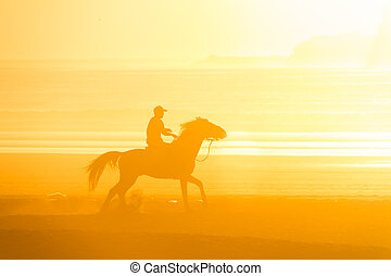 Horse riding on the beach at sunset. - Man riding horse on...