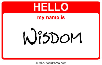 name bailout - hello my name is wisdom red sticker