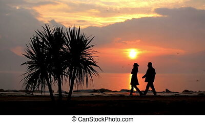 couple walking 2 - couple walking sea side at sunset
