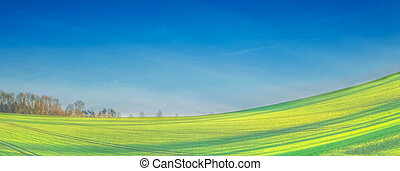 Lincolnshire wolds with field and sky