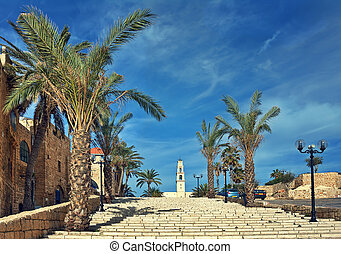 Old town of Jaffa, Israel - Stone stairs among palms under...