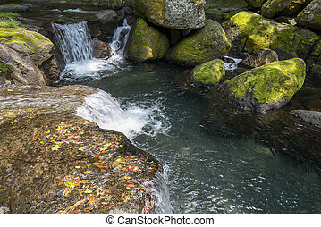 Mountain torrent flowing a step and mossy stones