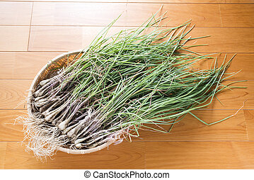 Chives in the bamboo basket on a wooden floor