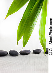 Spa massage stones with fresh bamboo leaves
