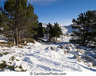 Snow covered road on mountain Biokovo in Croatia